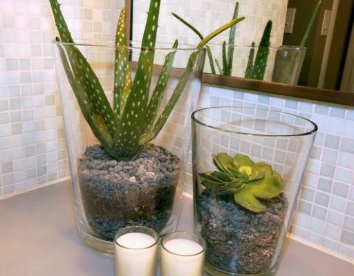 ...một vài chậu câynhỏkhiến phòng tắm trở nên dễ thương.Nguồn:forum.vietdesigner.net