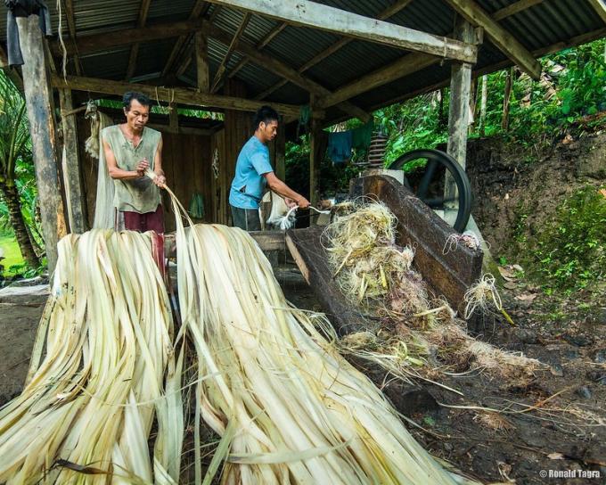 Khẩu trang từ sợi cây Abaca giảm thiểu rác thải mùa Covid