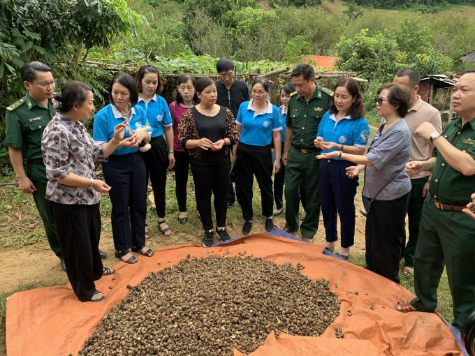 Lãnh đạo đoàn công tác đi thăm mô hình ở Bản Tòng, xã Chiềng Khừa