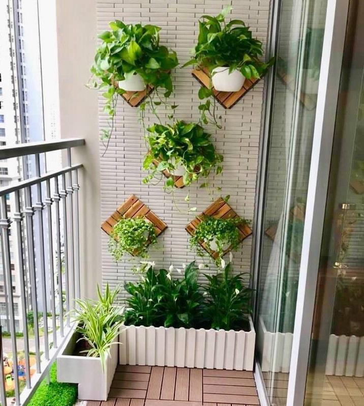 9 ý tưởng cây cảnh treo tường tạo sự mới, lạ cho ngôi nhà