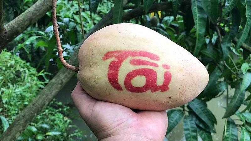 Nhiều loại trái cây độc lạ hút người tiêu dùng dịp tết