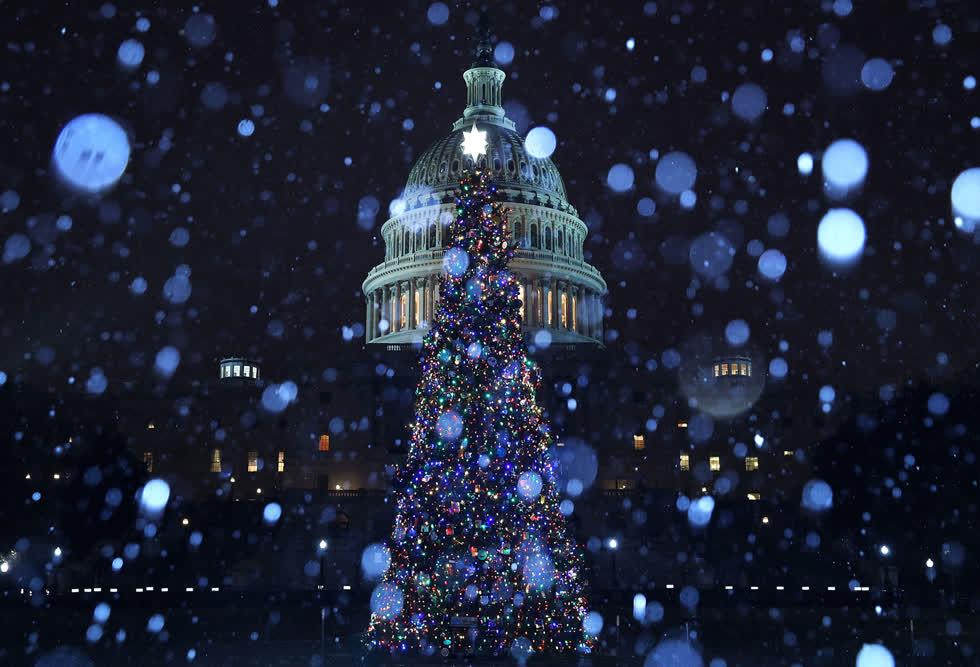 Hình ảnh cây thông với mùa đông cùng hiệu ứng ánh sáng mưa đá và tuyết rơi trên Tòa nhà Quốc hội Mỹ vào ngày 16/12 tại Washington, DC. Ảnh:Getty.