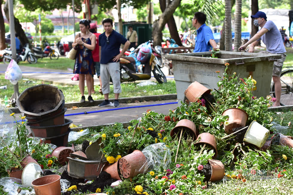 Tiểu thương cho biết, hoa bán ban đầu 50.000 đồng/chậu nhưng đến giờ trả mặt bằng người mua trả giá 10.000 đồng/chậu nên không thể bán. Những chậu hoa cuối cùng cũng đập bỏ.