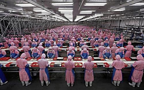 Nhật Bản cần lao động nước ngoài.