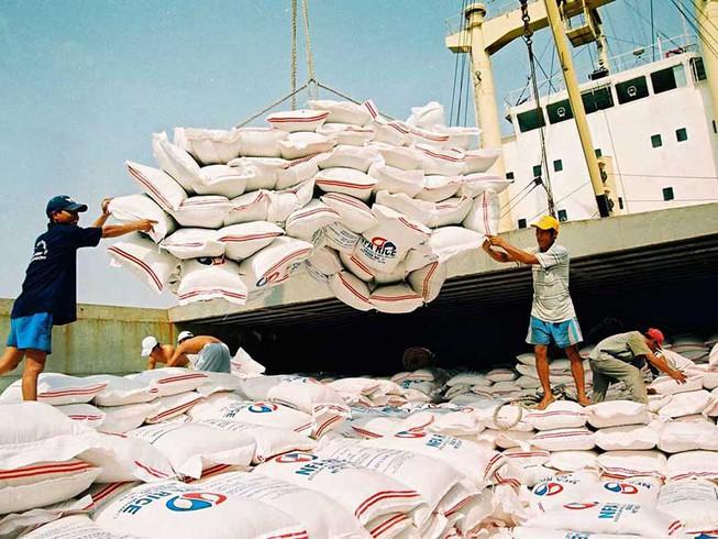 Tạm dừng xuất khẩu gạo vào ngày 24/3. Ảnh: PLO