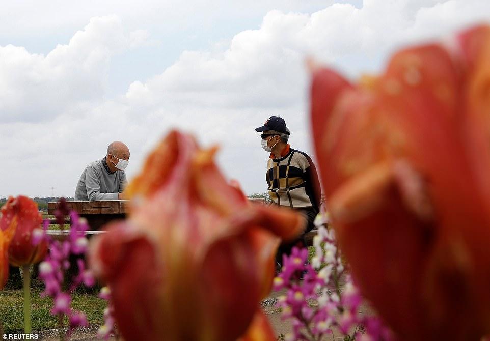 Những người đàn ông đeo khẩu trang ngồi ở băng ghế gần hoa tulip chưa cắt, sẽ được cắt nhỏ để ngăn chặn các cuộc tụ họp, mặc dù cho đến nay Nhật Bản đã cố gắng ngăn chặn sự lây nhiễm.