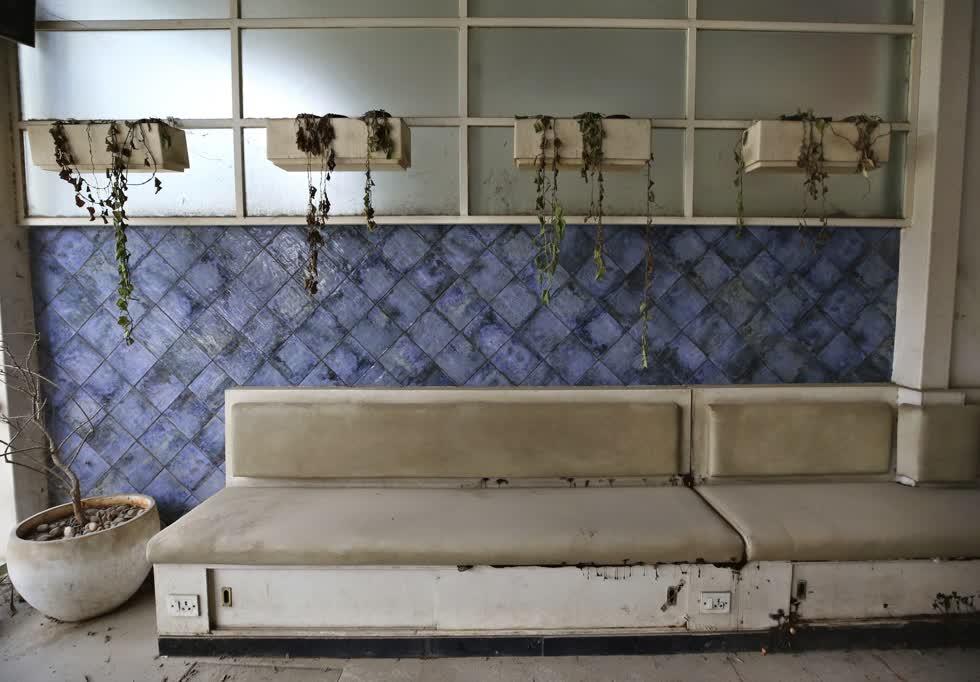 Cây cối khô héo tại một quán ăn đã đóng cửa ở Bengaluru, Ấn Độ. Ảnh: AP