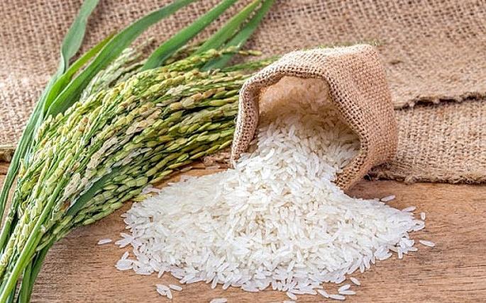 Giá gạo TP-NL IR 504  ổn định, sức mua tăng mạnh