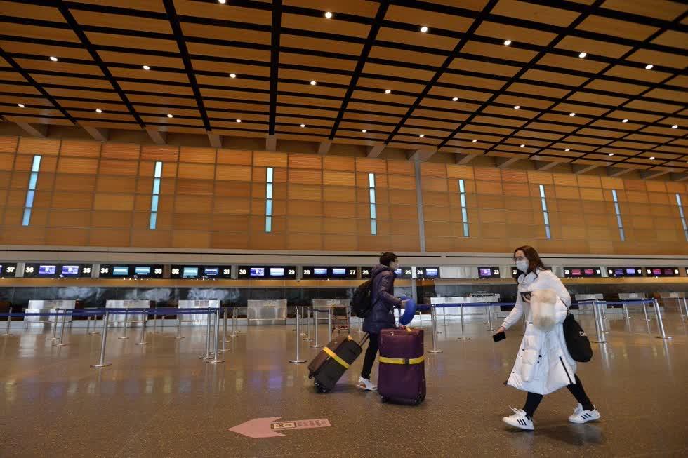Trong bối cảnh hạn chế đi lại do Bắc Kinh và Washington áp đặt trong thời gian đại dịch COVID-19 hoành hành, việc tìm chuyến bay trở về nước đối với sinh viên Trung Quốc là cơn ác mộng.