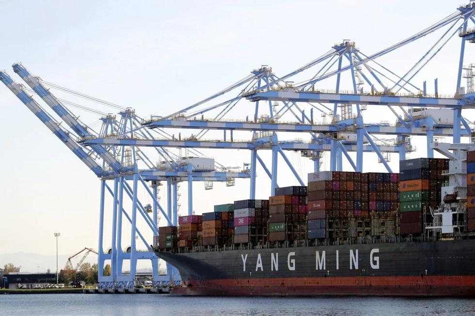 Cần cẩu được sử dụng để đưa container ra khỏi tàu vận tải biển Yang Ming tại cảng Tacoma ở Washington năm 2019.Ảnh: AP