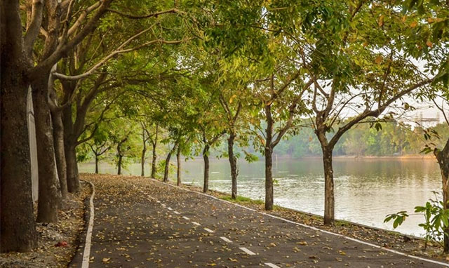 Gợi ý những địa điểm du lịch quanh năm xanh mát nằm sát Sài Gòn