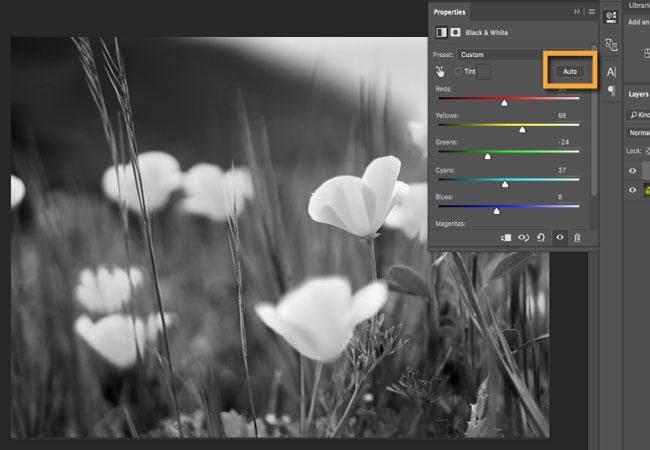 Kéo các thanh trượt màu riêng lẻ để thay đổi độ sáng của các phần tương ứng trong ảnh đen trắng.