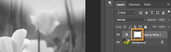 Đảm bảo rằng hình thu nhỏ của layer mask màu trắng trên layer điều chỉnh Black & White được chọn.