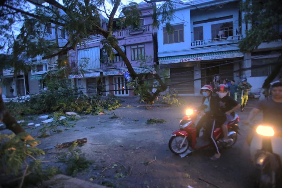 Nhiều tuyến đường vẫn chưa lưu thông được vì cây lớn ngã ngang trên đường. Ảnh: Nguyễn Nguyên