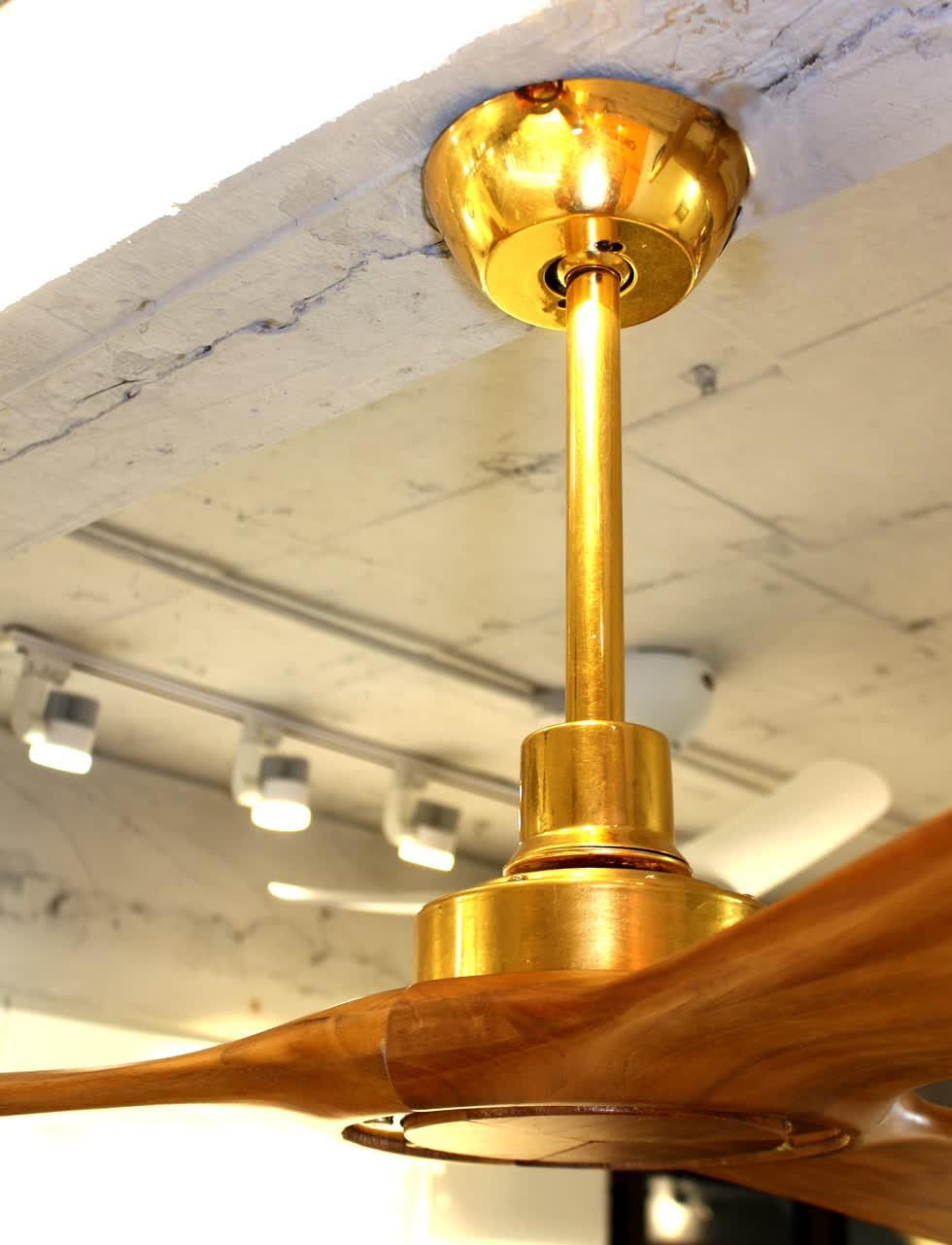Quạt mạ vàng có giá khoảng 40 triệu.