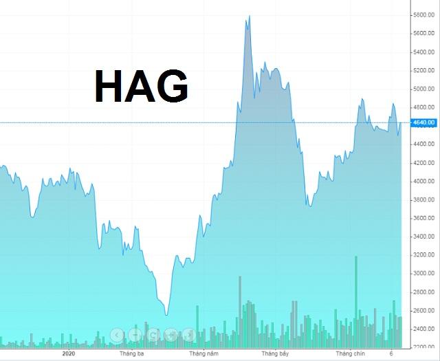 Diễn biến giá cổ phiếu HAG từ đầu năm 2020 đến nay. Nguồn: VietstockFinance