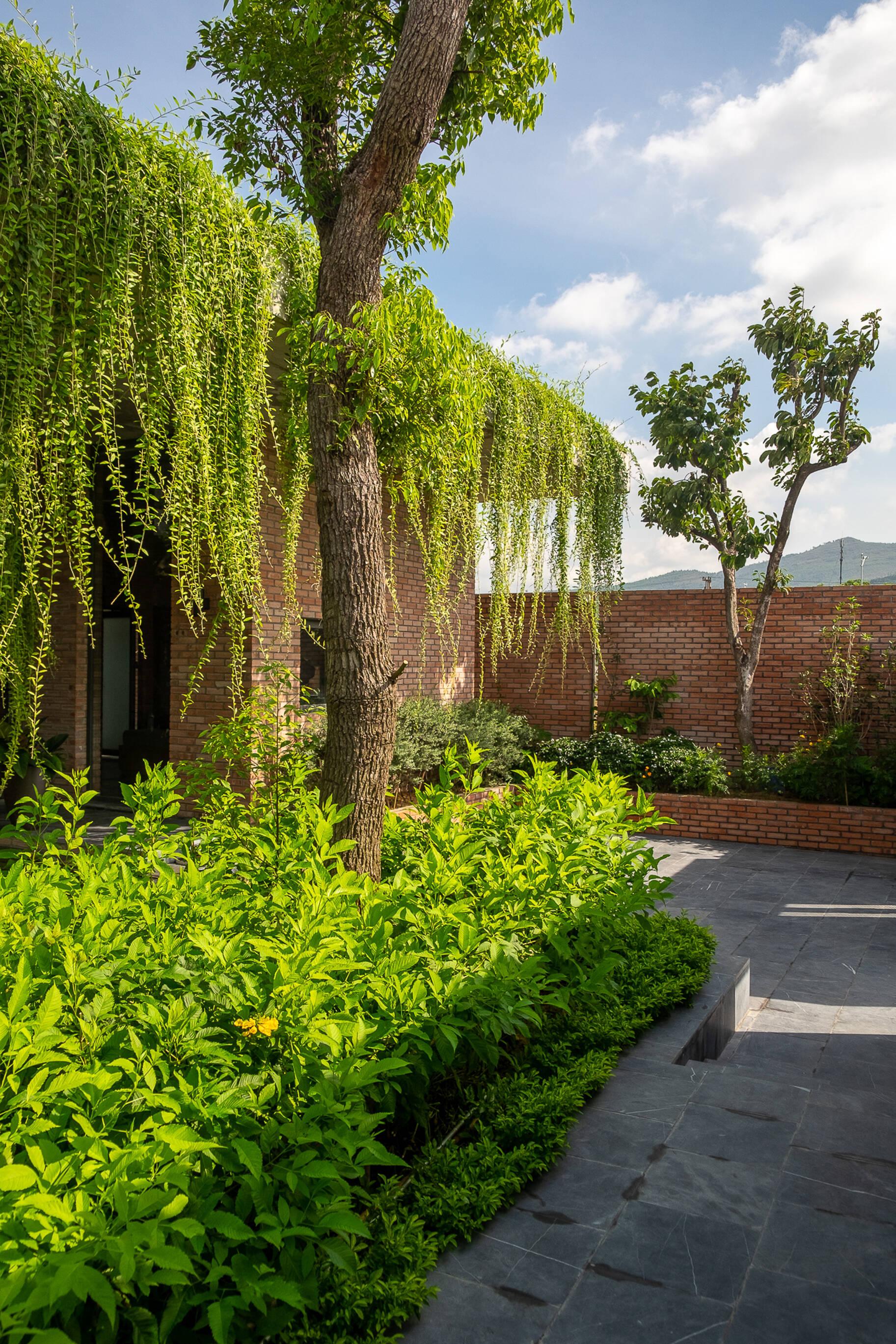Cây xanh không chỉ có tác dụng chắn nắng, điều hòa không khí mà còn tạo vẻ thẩm mỹ cho ngôi nhà.