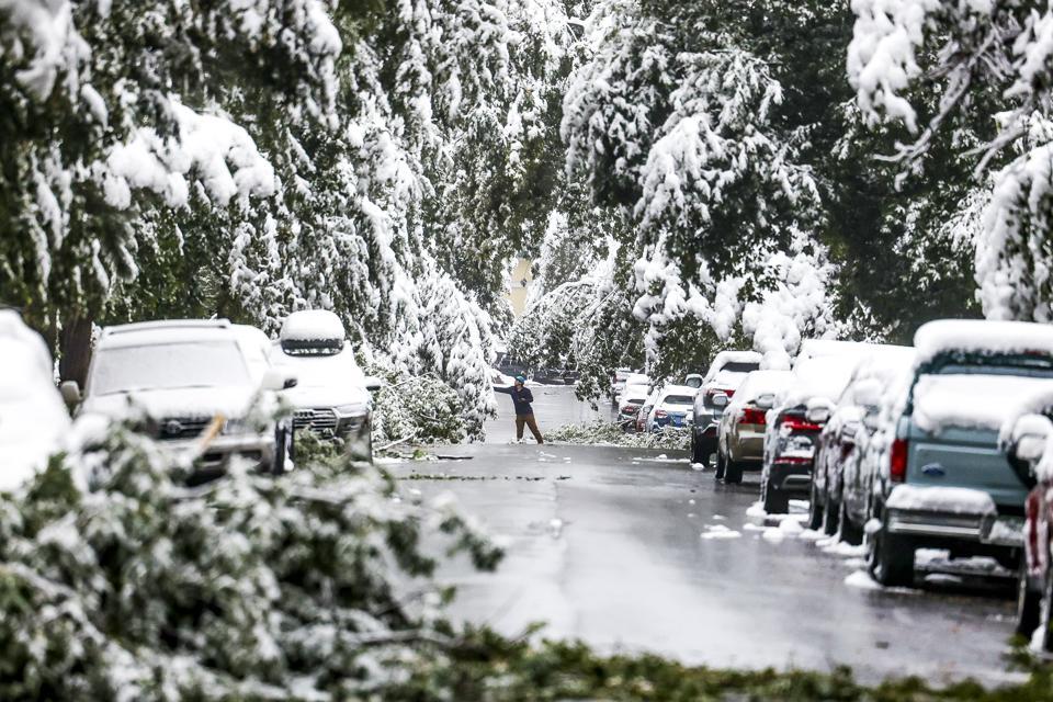 Một người đàn ông cố gắng dọn sạch những cành tuyết trong cơn bão đầu mùa vào thứ Tư ở Boulder. Ảnh: Getty.