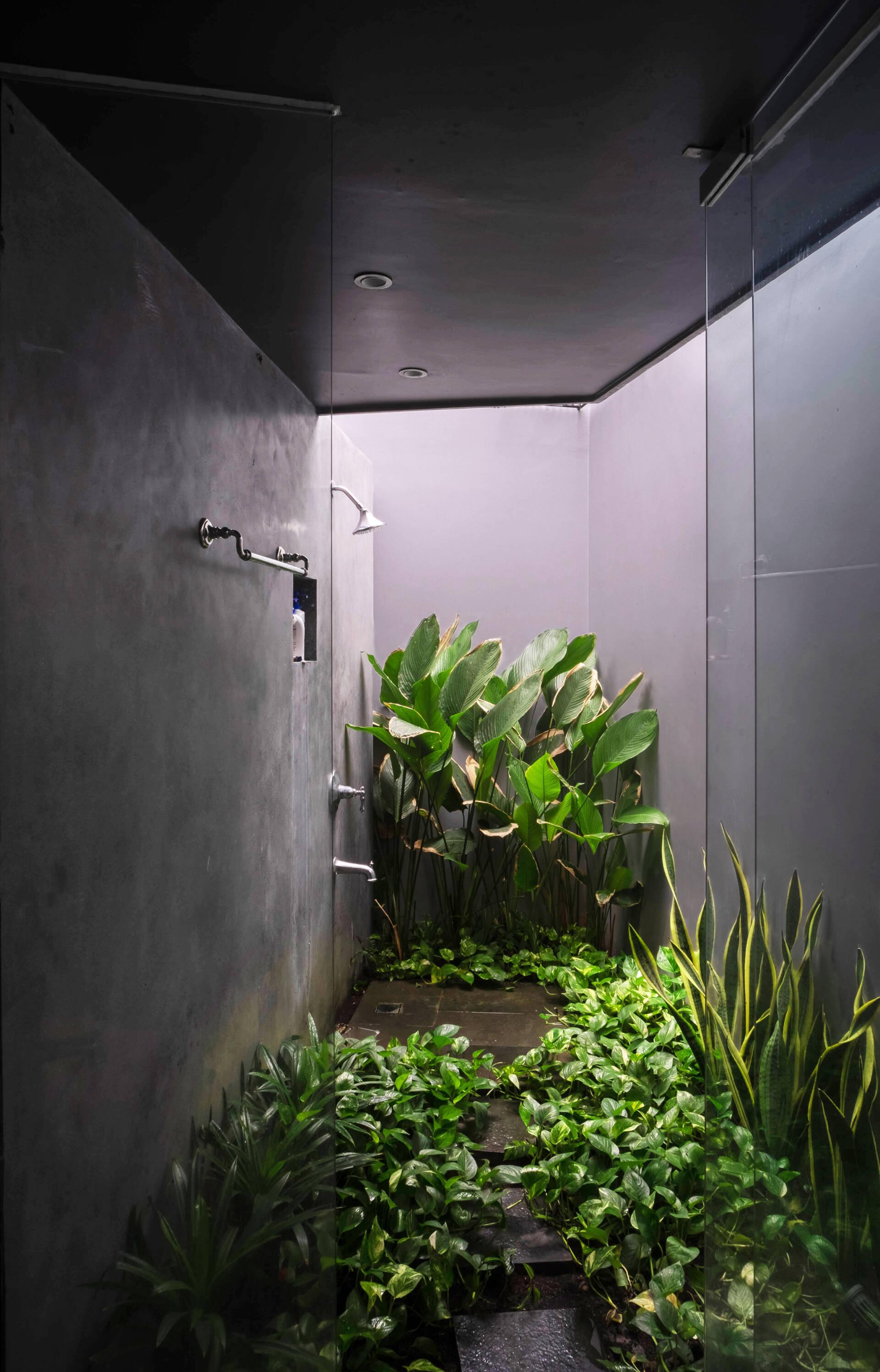 Khu vực tắm đứng độc đáo khi bố trí nhiều cây xanh xung quanh, hệt như một góc nhỏ của khu rừng nhiệt đới.