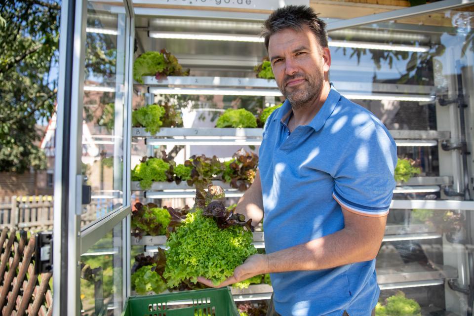 Người làm vườn bậc thầy Jochen Haubner làm đầy một chiếc máy làm salad với món salad tươi ở Bavaria.Haubner đã phát triển máy làm salad tự động để giảm lãng phí thực phẩm và đóng gói.Ảnh: Getty.