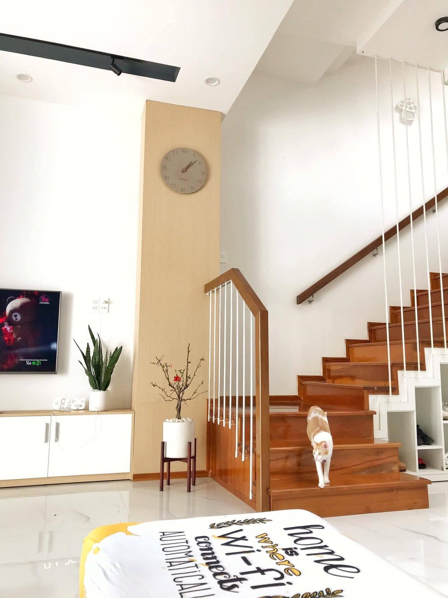 Đồ trang trí trong nhà như đồng hồ, thảm trải sàn… thường được gia chủ chọn lựa kỹ lưỡng và đặt mua trên Taobao.