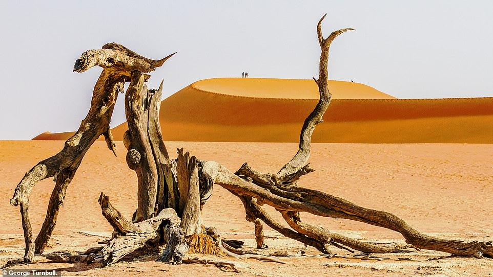 Nhiếp ảnh gia George Turnbull đã chụp được hình ảnh đầy mê hoặc này về Công viên Namib-Naukluft ở Namibia, và đã được chọn trong danh sách ảnh phong cảnh.