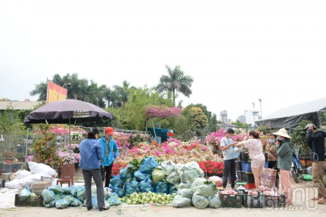 Hàng chục tấn nông sản Hải Dương được người dân thủ đô 'giải cứu' mỗi ngày
