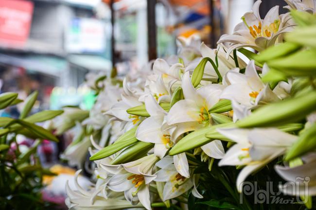Chủ cửa hàng chọn ra những bông hoa đã nở để riêng một dãy để khách dễ chọn lựa.