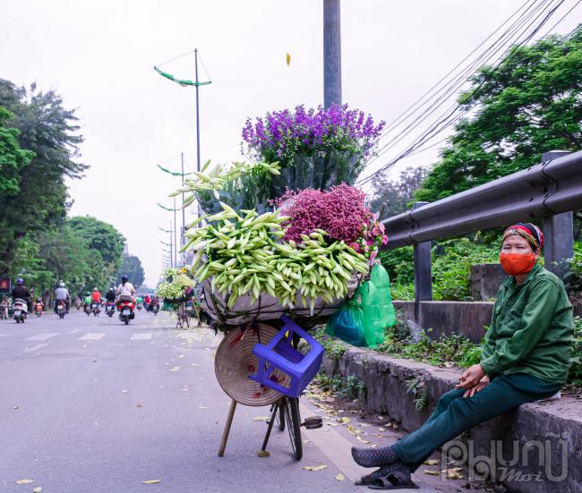 Hoa loa kèn từ vườn theo xe hàng rong của các bà, các chị ra phố để phục vụ người dân.