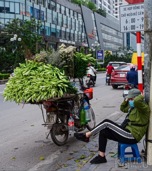 Thời điểm hiện tại hoa loa kèn hoa của tháng 4 đang là tâm điểm bày bán nhiều nhất.