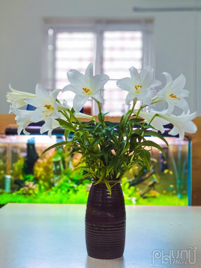 Căn phòng trở nên ấm cúng hơn khi được trang trí thêm hoa loa kèn.