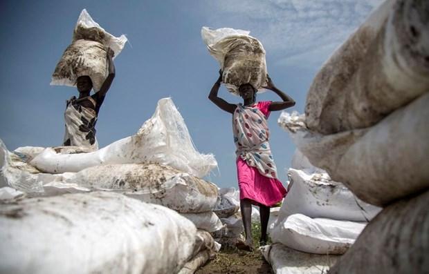 Người dân nhận lương thực cứu trợ tại Jonglei, Nam Sudan. (Ảnh: AFP/TTXVN