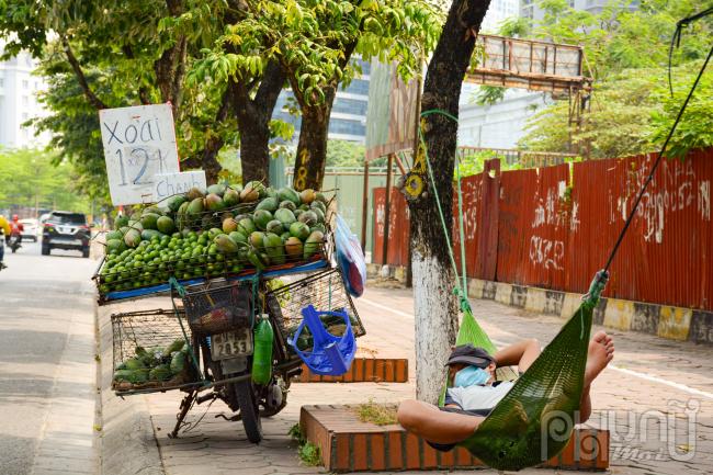 Hàng hoa quả ế ẩm vì nắng nóng không ai ra đường nên đành mắc võng nghỉ ngơi luôn tại bóng mát cây ven đường.