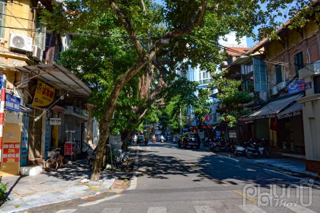 Phố Hàng Mã, quận Hoàn Kiếm là vùng đỏ do ảnh hưởng dịch Covid-19phải tiếp tục thực hiệngiãn cách xã hộitheo nguyên tắc Chỉ thị 16. Vì thế, mua trung thu năm nay đường phố trở nên vẳng vẻ.