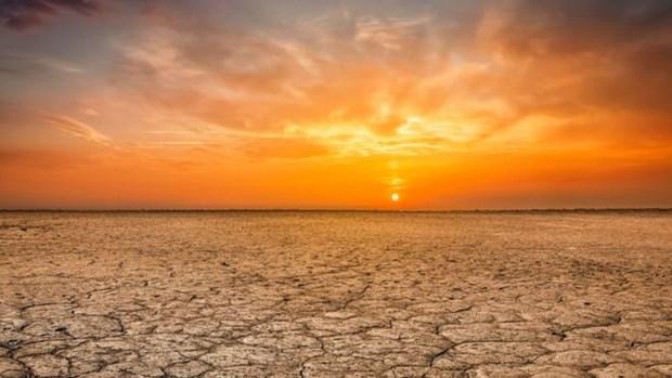Năm 2019 đang trên đà trở thành một trong 3 năm nóng nhất trong lịch sử. (Nguồn: Getty Images)