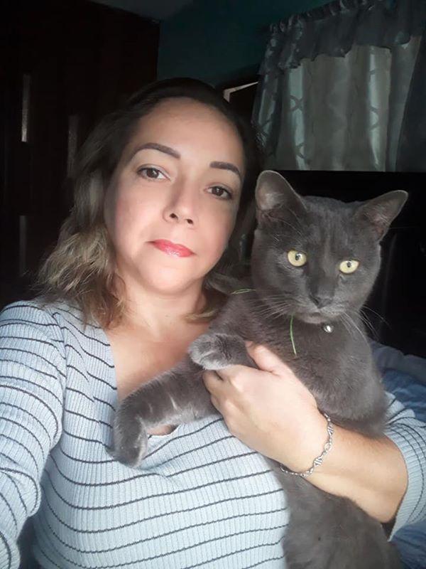 Gia đình phát hiện ra con mèo của họ đã sống một cuộc sống hai mặt