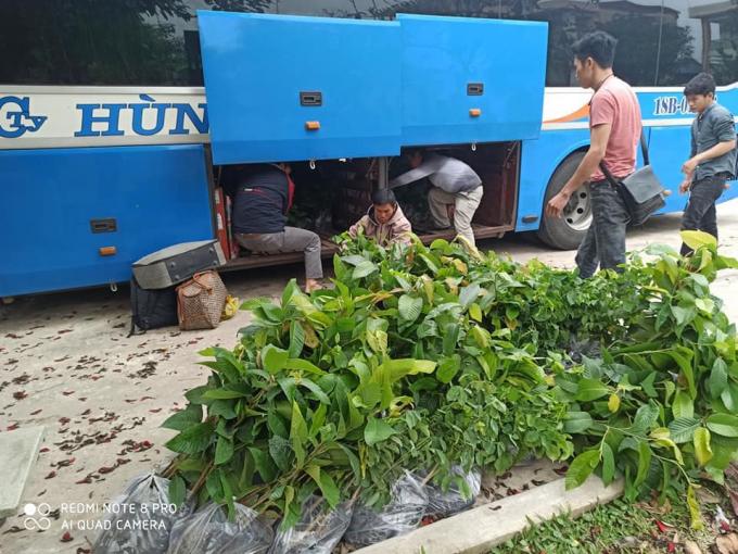 Nhóm SHNTphát động dự án trồng cây, phổ biến tri thức bảo vệ môi trường