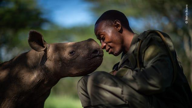 Bức ảnh về một kiểm lâm viên và một con tê giác trẻ ở Kenya cũng lọt vào danh sách này.