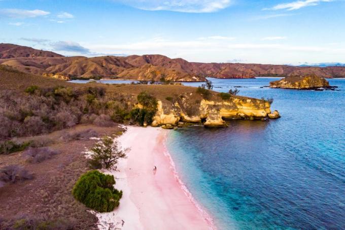 Bãi biển hồng, đảo Komodo, Indonesia.Đây là một trong số ít những bãi biển màu hồng trên hành tinh, được biết đến với những ngọn đồi núi lửa và động vật hoang dã đa dạng. Màu của bãi biển được tạo nên nhờ những sinh vật siêu nhỏ foraminifera, có lớp vỏ hồng. Bạn có thể thư giãn trên bãi cát hồng hoặc đi bơi, nhưng hãy chắc chắn tránh xa những con rồng Komodo đang lang thang tự do trên đảo.