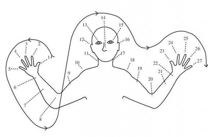 Cách đếm bằng bộ phận cơ thể của người Oksapmin. Ảnh: ReseachGate.