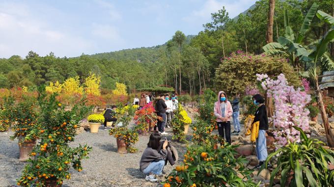 Các hoạt động du lịch tại Thanh Hóa trở lại bình thường