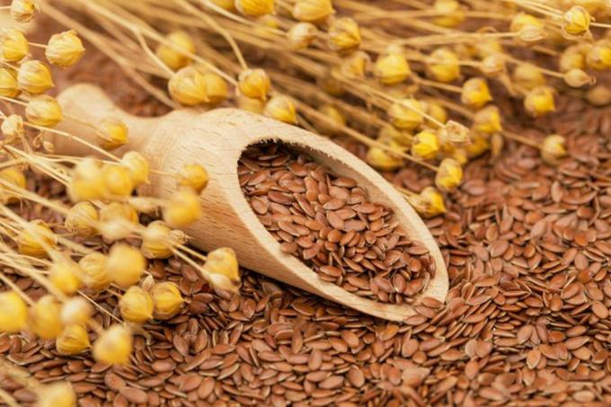 Hạt lanh chứa hàm lượng phytoestrogen cao, trong 100g hạt lanh có 379.380 mcg estrogen thảo dược.