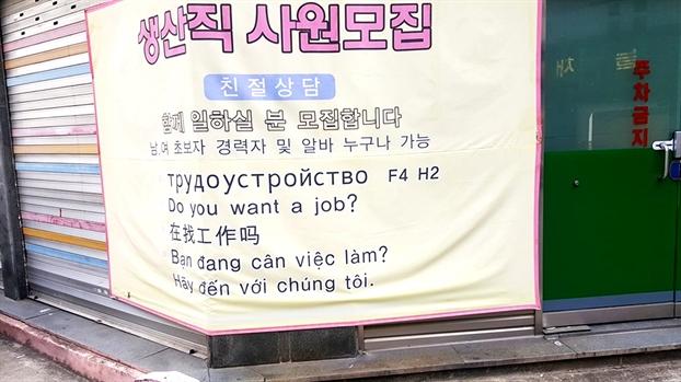Bảng tuyển dụng lao động bằng tiếng Việt, Hàn, Nga, Anh, Trung Quốc trên đường phố Hàn Quốc.