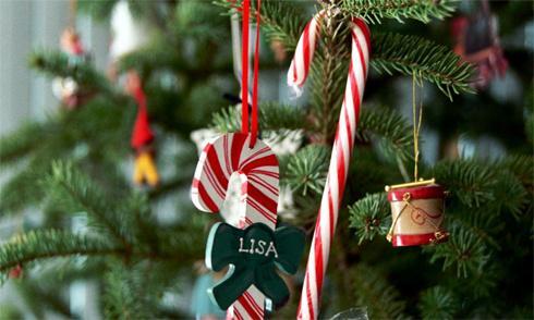 Kẹo hình gậy treo lên cây thông để trang trí là biểu tượng không thể thiếu của Noel.