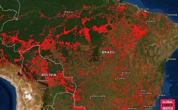 Bản đồ cho thấy vị trí của tất cả các vụ cháy rừng tại Brazil từ ngày 13.8.