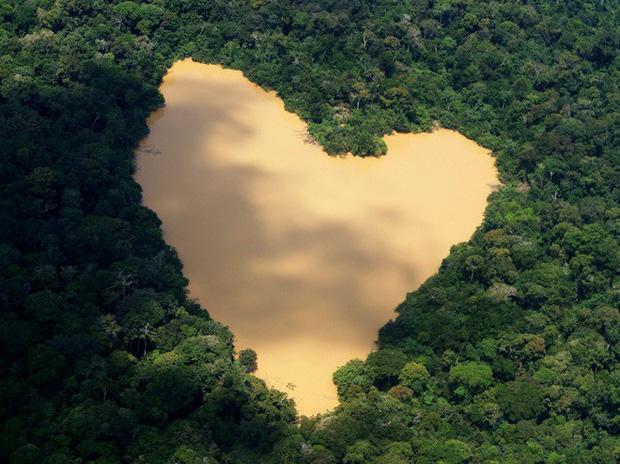Một hồ nước tự nhiên hình trái tim được cấp nước bởi sông Amazon, khu vực gần Manaus (Brazil).