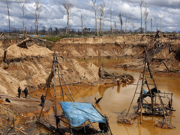 Ngoài nạn phá rừng, đào vàng trái phép cũng là một vấn đề nghiêm trọng ảnh hưởng đến rừng Amazon. Trong ảnh: Cảnh sát đang kiểm tra khu đào vàng trái phép tại Mega 14, một vùng thuộc Madre de Dios (Peru).