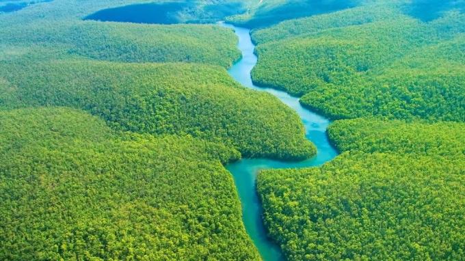 Diện tích của Amazon lên tới 5,5 triệu km2, bằng nửa tổng lãnh thổ của Liên bang Mỹ (gồm cả Alaska và Hawaii) và gần bằng diện tích của Australia (7,7 triệu km2).
