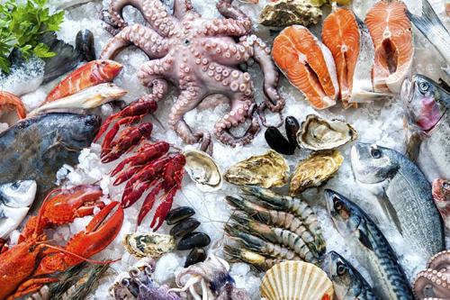 Hải sảnrất dồi dào canxi,protein, kẽm, o-mega3, vitanmin B...