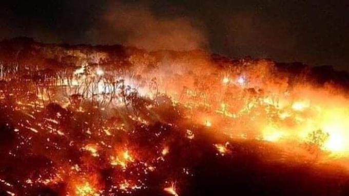 Nhiệt độ cao kỷ lục và hạn hán kéo dài do biến đổi khí hậu đã tạo điều kiện thuận lợi cho những ngọn lửa lan rộng, phá hủy hơn 1.000 ngôi nhà và khiến 24 người thiệt mạng.